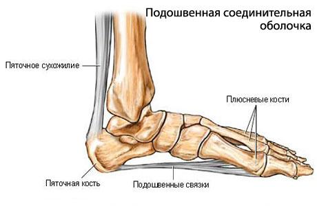 Причины появления болей в суставах ног полный анализ диагностика и лечение