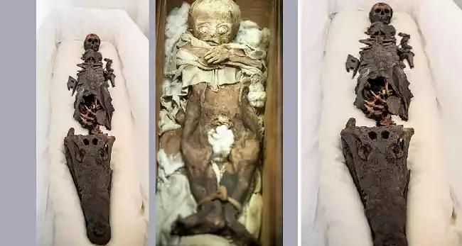 Μια μούμια πριγκίπισσας της αρχαίας Αιγύπτου και ένας κροκόδειλος αποκαλύφθηκαν στο κοινό μετα από έναν αιώνα!