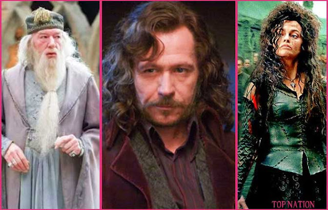 Harry Potter: Where Do You Belong In The Order Or The Death Eaters?