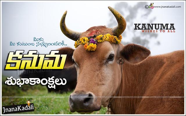kanuma greetings quotes in telugu, kanuma subhakankshalu in telugu