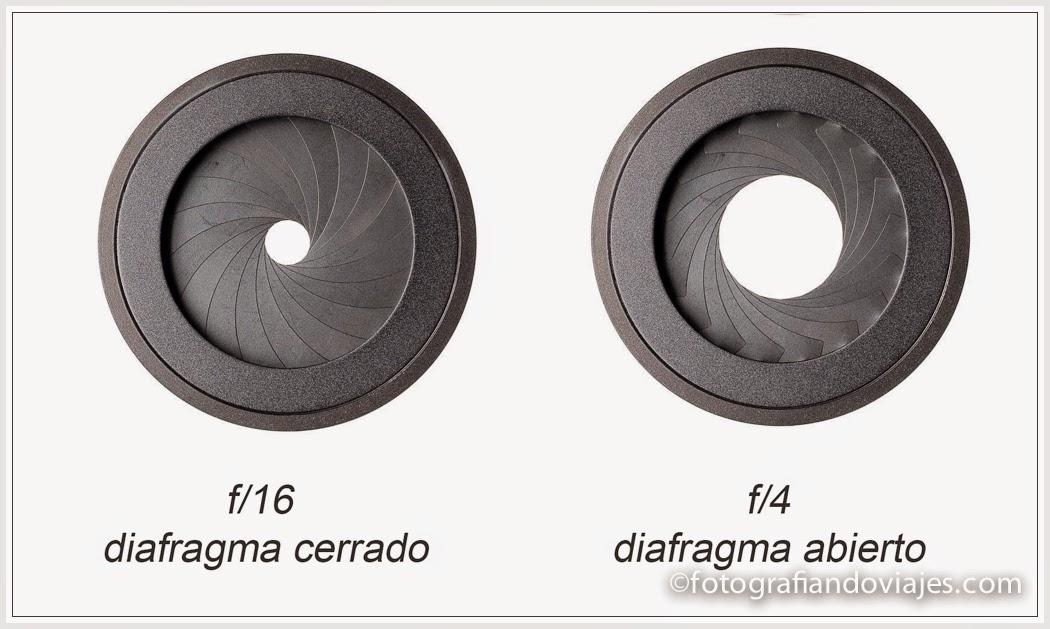cortinilla diafragma