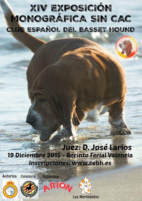XIV Exposición Monográfica sin CAC Valencia 1