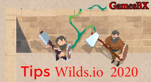 tips-wilds-io-2020