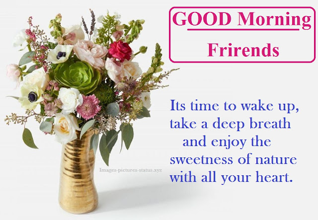 Best Good morning wishes flowers photos, picture, images