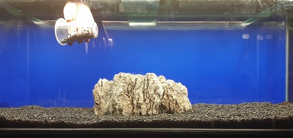 Tank Substrate & Rock