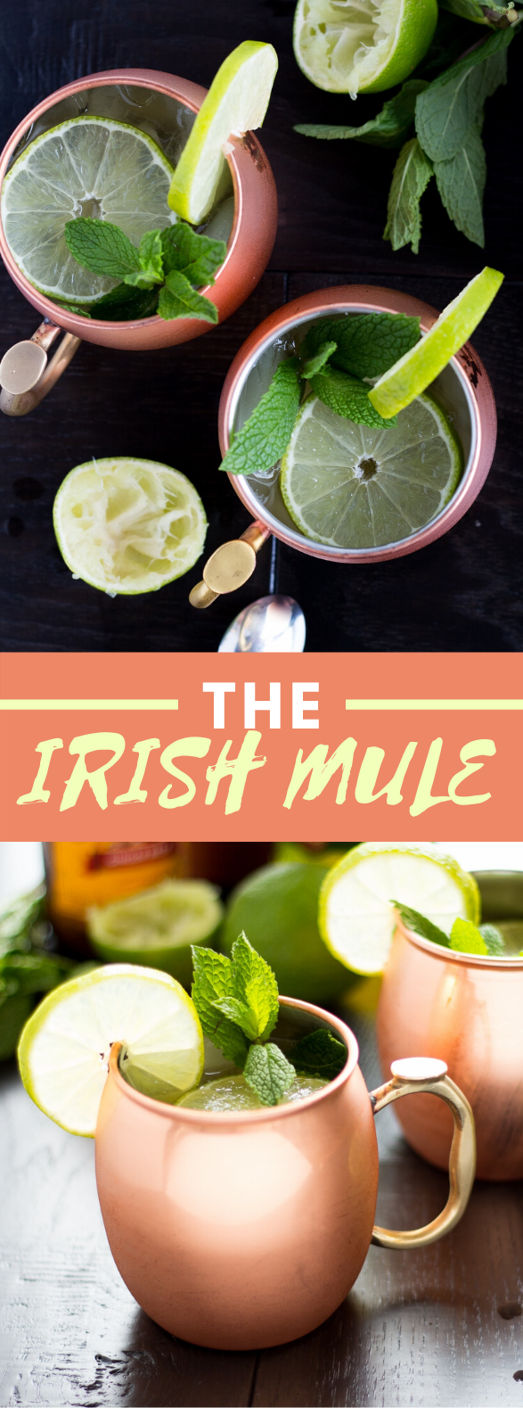 THE IRISH MULE #drinks #whiskey