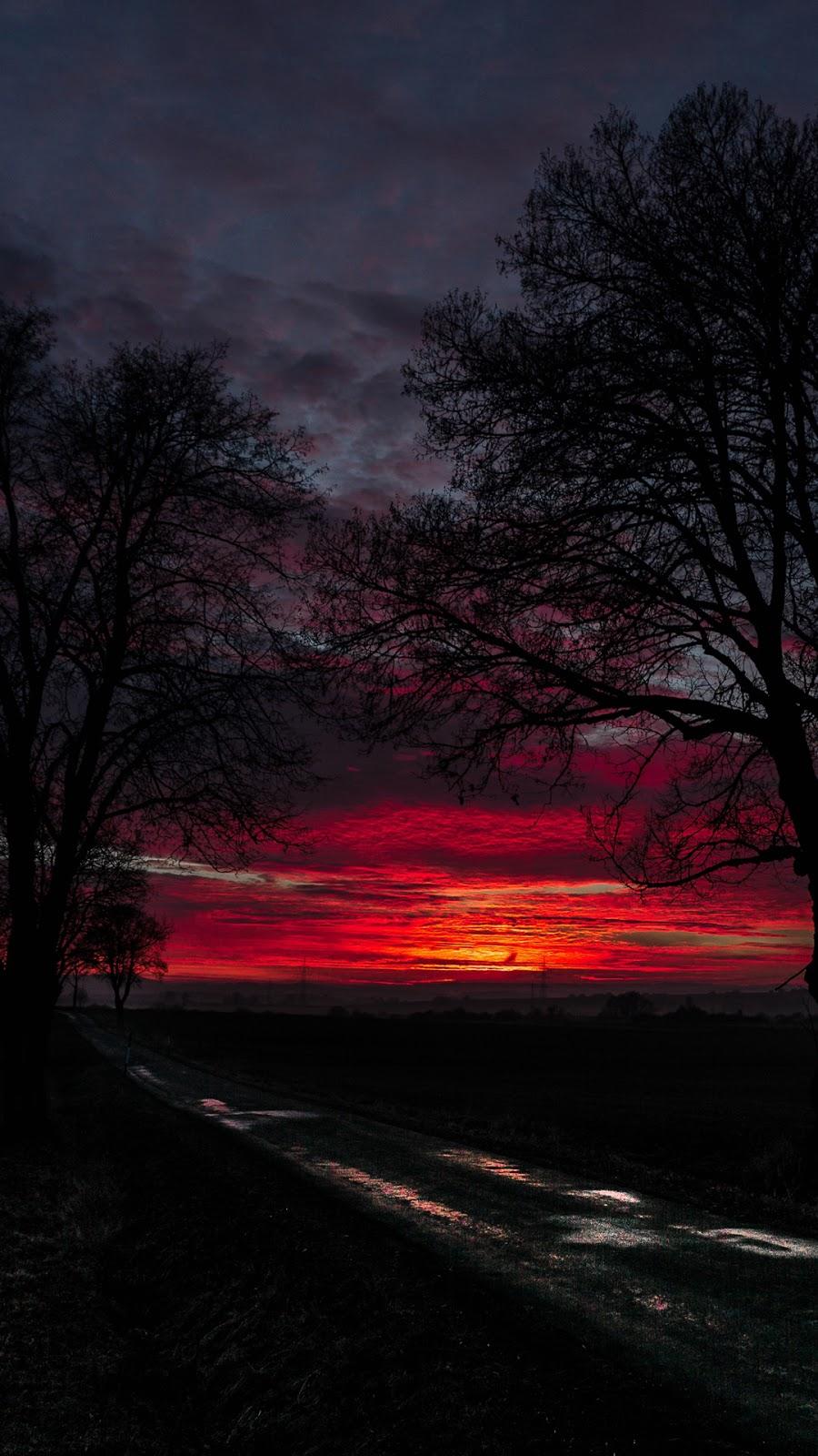 Phong cảnh giữa mặt trời lặn
