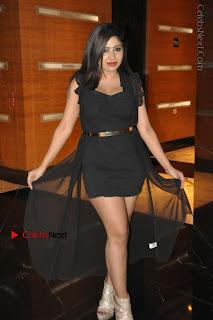 Telugu Actress Model Madhulagna Das Latest Spicy Stills in Black Short Dress  0009.JPG