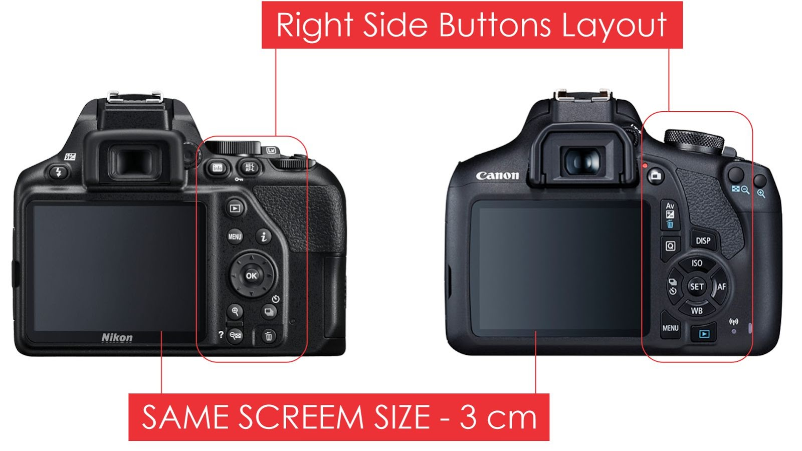 Nikon D3500 and Canon 1500D Screen Size and Buttons