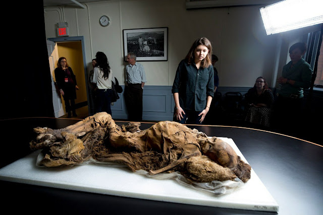 Clues of heart disease found in 16th-century mummies from Greenland