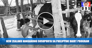 GOOD NEWS: New Zealand To Support Dairy Program in Philippines
