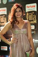Telugu Actress Aarthi in Deep Neck Backless Golden Gown at IIFA Utsavam Awards 2017 Exclusive 42.JPG