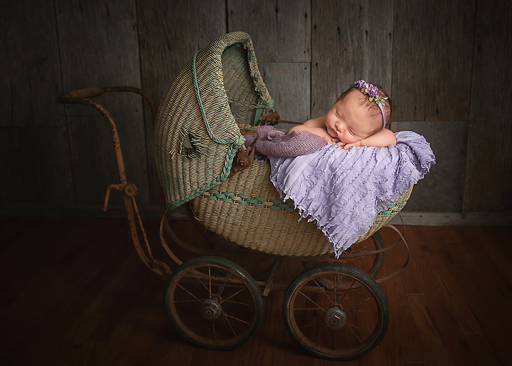 best outdoor newborn photographer in DeKalb, Sycamore IL area newborn family and children