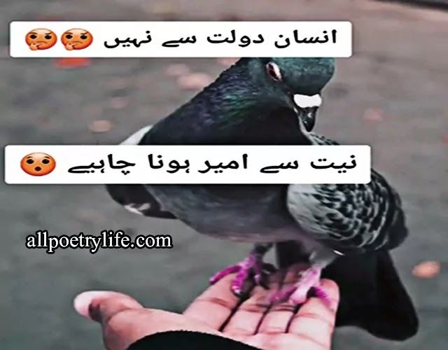 Status for WhatsApp in Urdu, WhatsApp status in Urdu Poetry is sad, Love status in Urdu, sad status in Urdu for Whatsapp, Poetry status in Urdu for Whatsapp, urdu poetry sad status, urdu poetry status for whatsapp, whatsapp poetry in urdu, status attitude in urdu, urdu poetry fb status, best poetry whatsapp status  sad whatsapp status poetry,