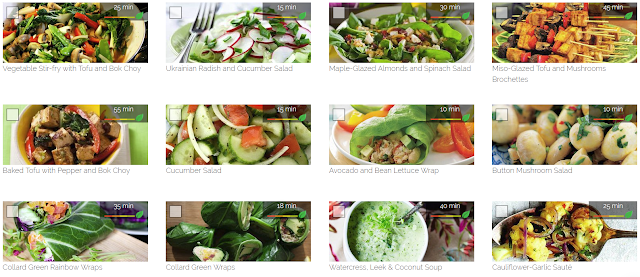 Paleo Vegeo Meal Plan and Curated Recipe library I Barbara Christensen