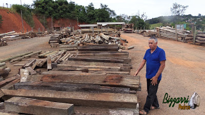 Bizzarri em um depósito de madeira de demolição. Na foto, escolhendo dormente de madeira de Jacarandá sendo madeira para pilares de terraço, pontes de madeira e para execução de muros com dormente. 24 de março de 2017.