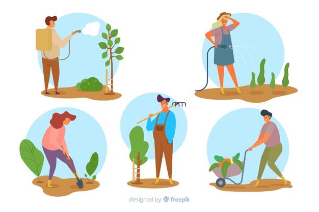 Penyuluh Pertanian Lapangan (PPL)