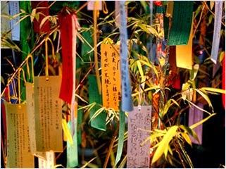 เทศกาลทานาบาตะ (Tanabata Festival)