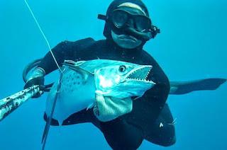 http://vnoticia.com.br/noticia/3271-mergulhador-de-pesca-submarina-continua-desaparecido-e-familia-faz-apelo-precisamos-encontra-lo