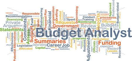 Budget Analyst Career Job Opportunities In Public And Private Sector