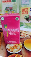 Obat Pelangsing Slimming Herbal Aman dan Herbal