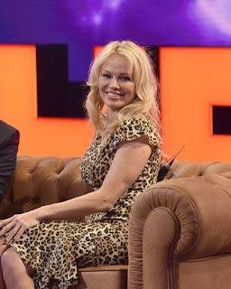 declaraciones Pamela Anderson