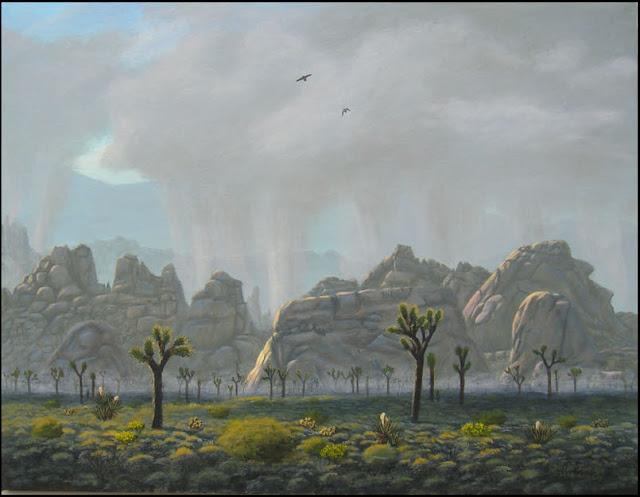 rain, storm, Joshua Tree National Park, clouds, Joshua trees, yuccas, wildflowers, flowers, gray, monzogranite, boulders, rocks