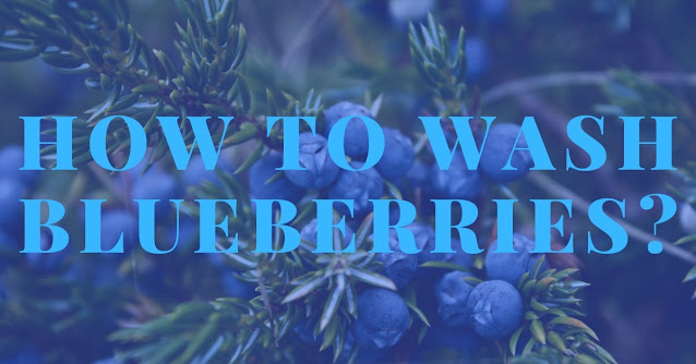 How to wash blueberries