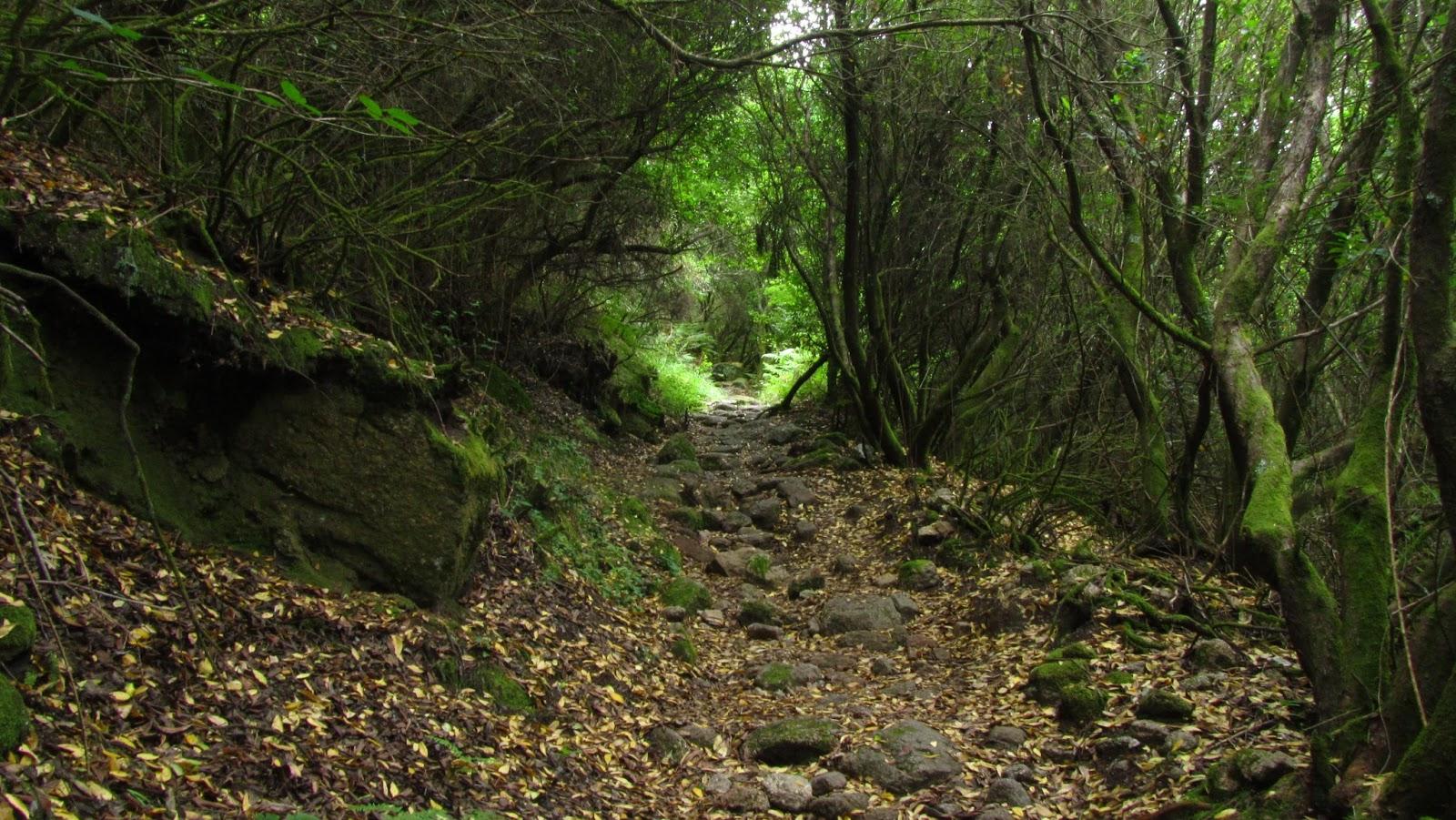 ameiseblog_ruta parque Peneda - Gerês