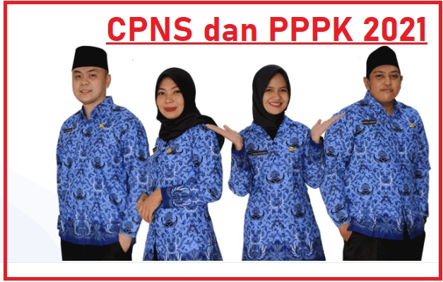 Formasi CPNS dan PPPK tahun 2021 Kabupaten Solok Selatan
