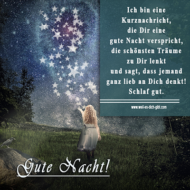 Eine Kurznachricht für einen lieben ✨ Gute Nacht Gruß