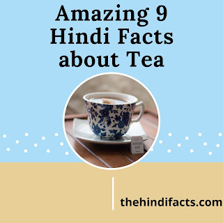 9-Amazing-Unknown-Hindi-Facts-about-Tea