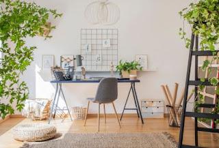 Indoor Plants in the Home Office