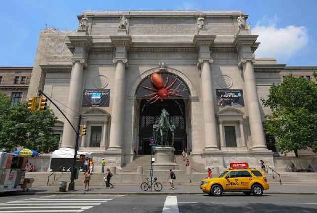 Informações do Museu da História Natural em Nova York