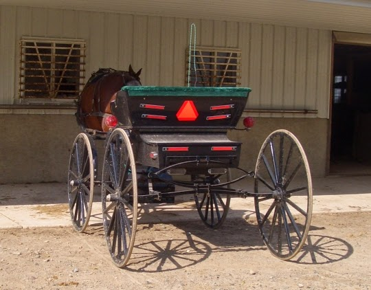Swiss Amish Buggy