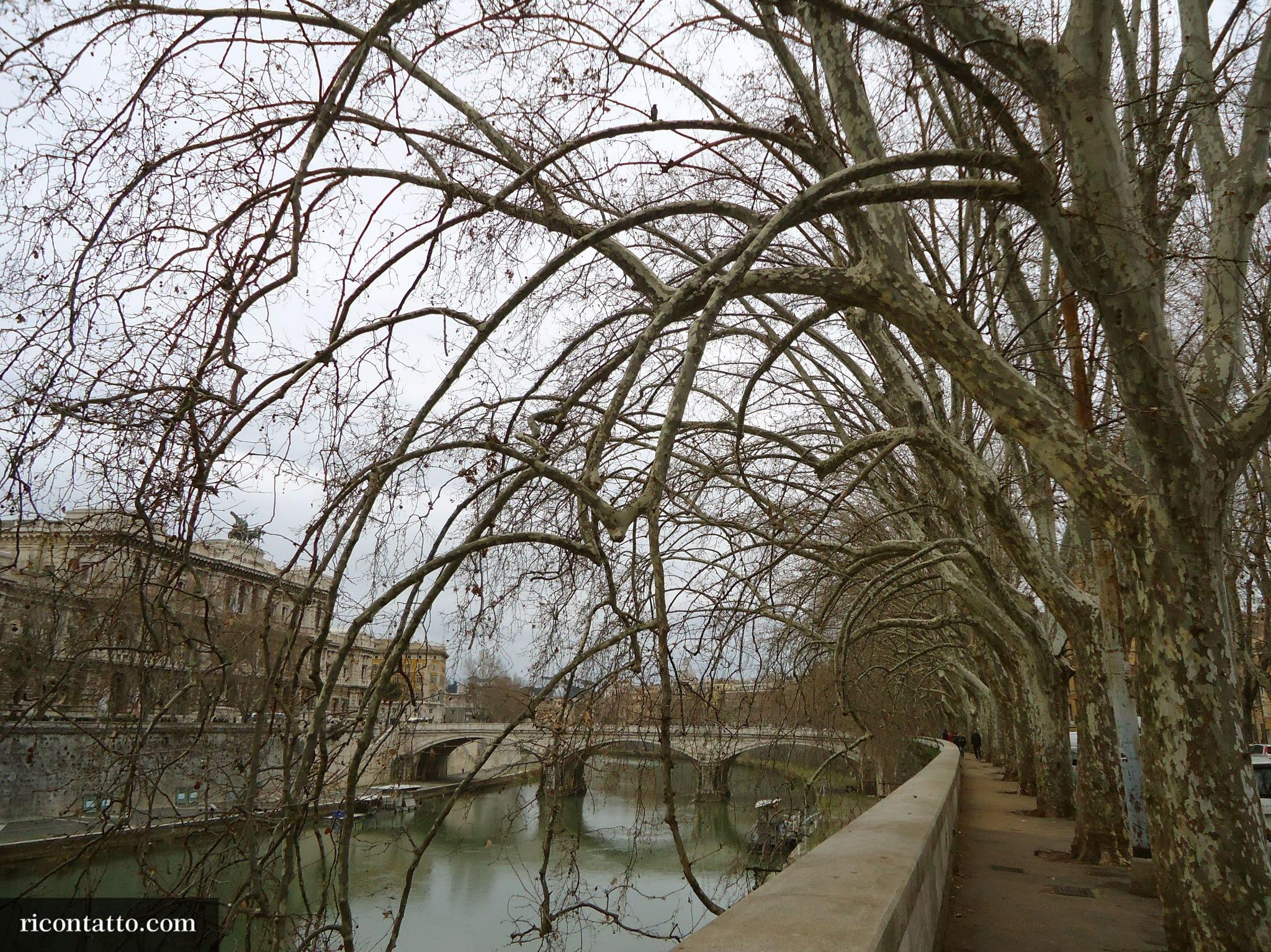 Roma, Lazio, Italy - Photo #02 by Ricontatto.com