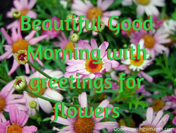 Good morning images to download for whatsapp