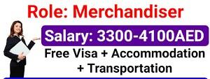 Delivery Merchandiser Jobs Vacancy In Abu Dhabi, UAE
