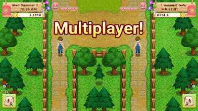 Harvest Moon: Light of Hope: How to Play Co-Op Multiplayer