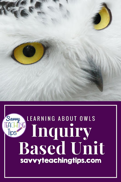 This unit of inquiry is great for giving kids freedom to learn about the owl of their choice.  It's perfect for teachers who are new to units of inquiry.  There are step-by-step instructions for how to develop inquiry questions and set up the plan for kids to do their own research and project.