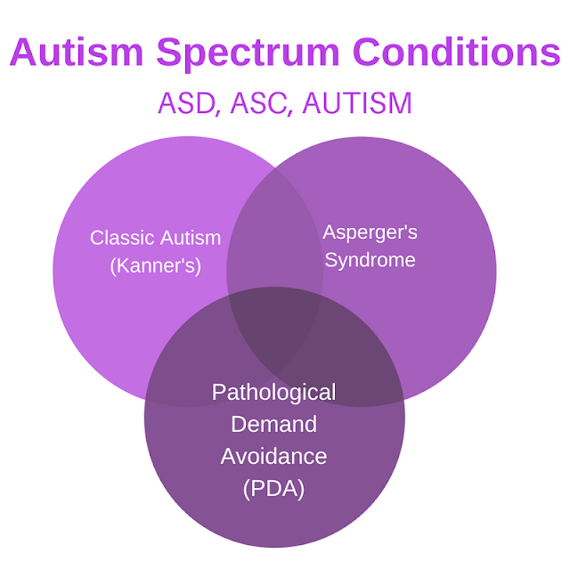 3 circles showing 3 types of autism - classic, aspergers and pda