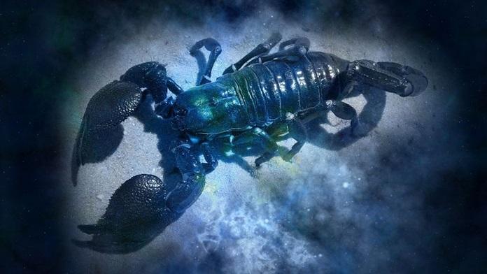 Oroscopo settembre 2021 Scorpione