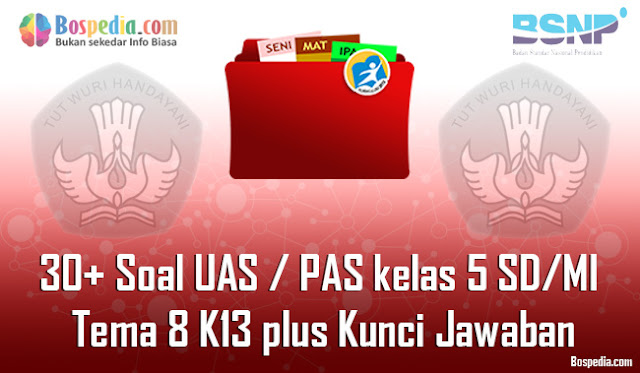 30+ Contoh Soal UAS / PAS untuk kelas 5 SD/MI Tema 8 K13 plus Kunci Jawaban