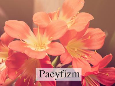 różowe, egzotyczne kwiaty, sławomira, sławomir, mitra, mir, słowiańskość, pokój na świecie; źródło: canva