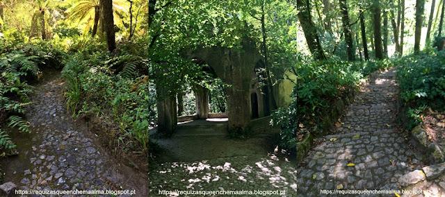 Descida da Gruta do Monge, Nora no meio da floresta , Parque do Palácio da Pena, Sintra