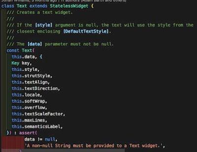 Flutter widget text class