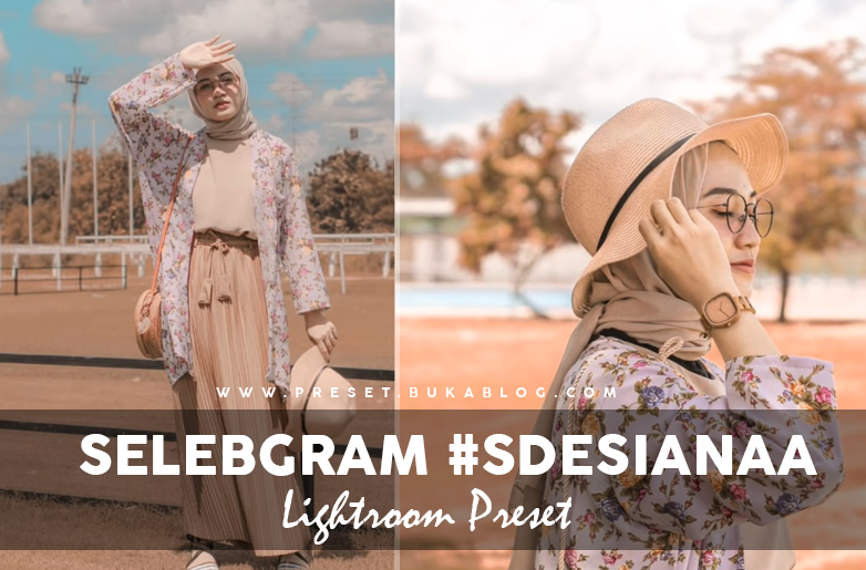 Free Selebgram @Sdesianaa Lightroom Preset XMP & DNG