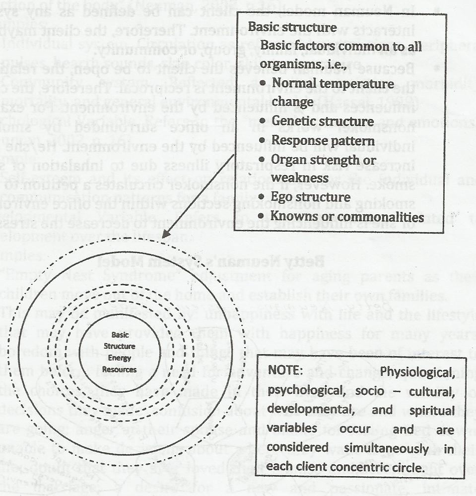 Betty Neuman S System Model The Theory