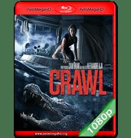 INFIERNO EN LA TORMENTA (2019) FULL 1080P HD MKV ESPAÑOL LATINO