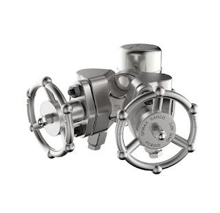 steam trap isolation valve set